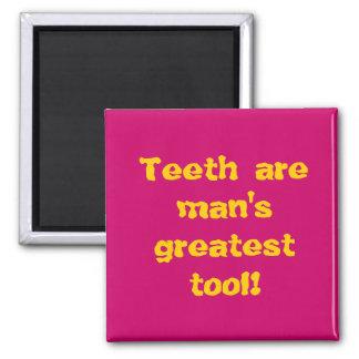 Teeth are man's greatest tool! magnet
