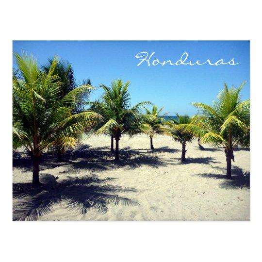 tela palms postcard