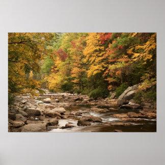 Tellico River TN  Print