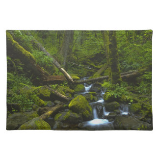 Temperate Rainforest Stream in Columbia River Placemat