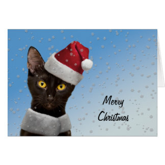 Template Add Santa Hat to your cat dog baby photo Note Card