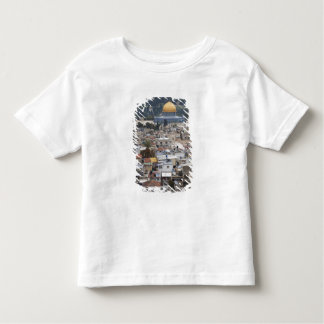 Temple Mount and Dome of the Rock Toddler T-Shirt