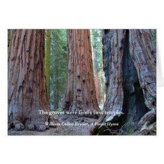 Temple of the Groves - Sacred Sequoia Trees, Quote Greeting Card