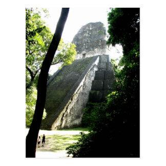 Temple V, Tikal, Guatemala Postcard