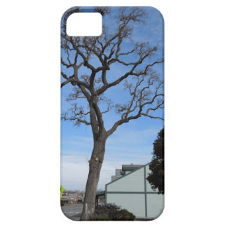 Templeton Oak Towers over Main St iPhone 5 Cover