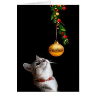 Tempted kitty cat Christmas Greeting Card