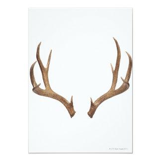 Ten Point Deer Card