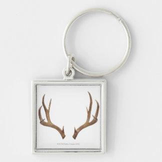 Ten Point Deer Keychains