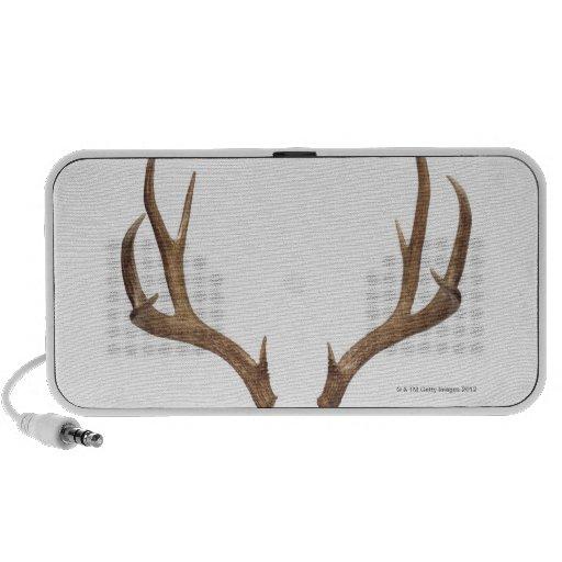 Ten Point Deer Travelling Speaker