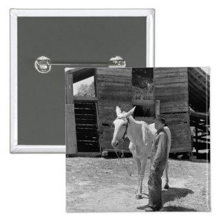 Tenant Farmer's Mule, 1930s Pin