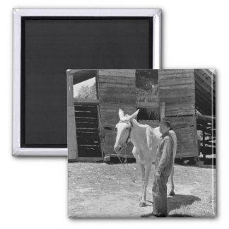 Tenant Farmer's Mule, 1930s Fridge Magnet
