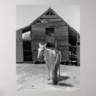 Tenant Farmer's Mule, 1930s Poster