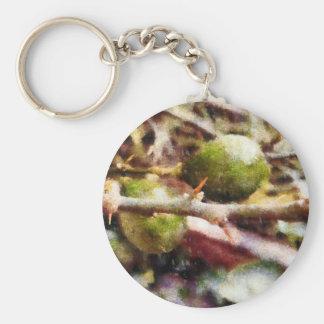Tender raw lemons basic round button key ring