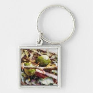 Tender raw lemons Silver-Colored square key ring