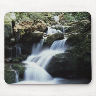 Tennessee, Great Smoky Mountains National Park 3 Mouse Mat