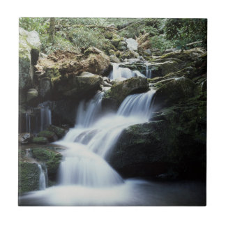 Tennessee, Great Smoky Mountains National Park 3 Tile