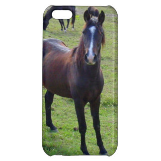 Tennessee Horse Case For iPhone 5C