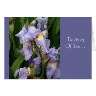 Tennessee Irises  Card