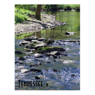 Tennessee Stream Postcard