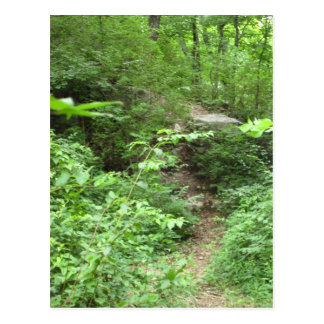 Tennessee Trail Postcards