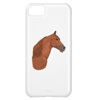 Tennessee Walking Horse 1 Case For iPhone 5C