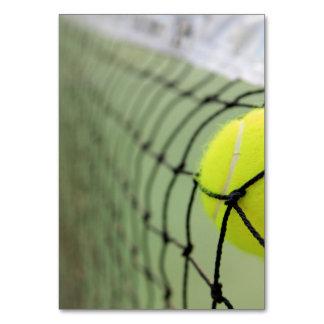 Tennis Ball Hitting Net Table Card