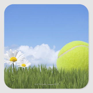 Tennis Balls Square Sticker