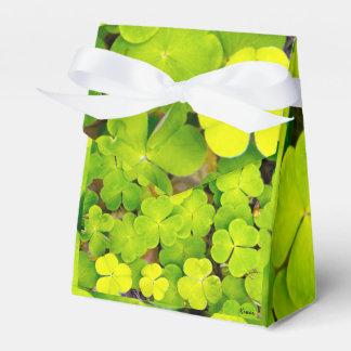 Tent Favor box - luck clover
