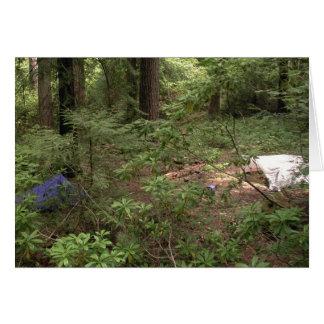 Tents Camping Card