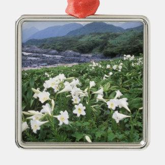 Teppo Yuri (Lily), Yakushima, Kagoshima, Japan Christmas Ornament