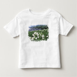 Teppo Yuri (Lily), Yakushima, Kagoshima, Japan Toddler T-Shirt