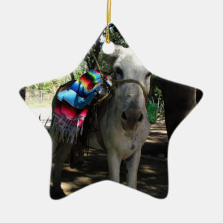 Tequila Donkey Christmas Ornament