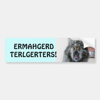 Terlgerters! Ermahgerd! Shocked Kitty Tailgaters Bumper Sticker