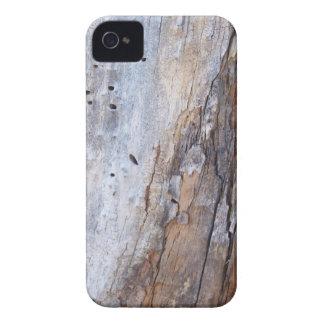 Termite Log Case-Mate iPhone 4 Cases