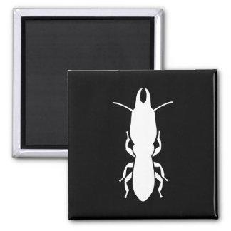 Termite Square Magnet