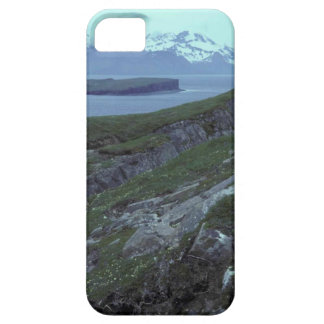 Terrace Island Wide Bay iPhone 5 Cases