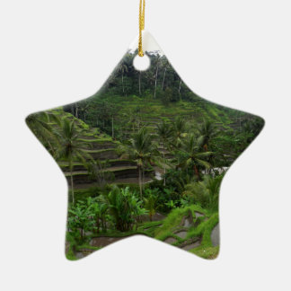 Terraced Rice Fields Christmas Ornament