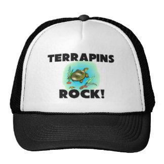Terrapins Rock Hat