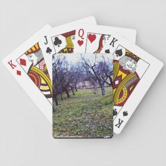 Terre Molisane Playing Cards