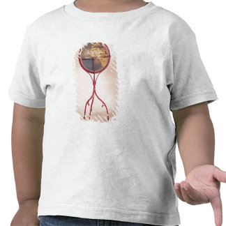 Terrestrial Globe, showing the Indian Ocean Shirts