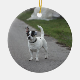 Terrier Dog looking Cute! Christmas Ornament