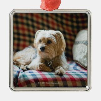 Terrier lying on checkered blanket christmas ornament