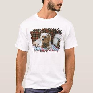 Terrier lying on checkered blanket T-Shirt