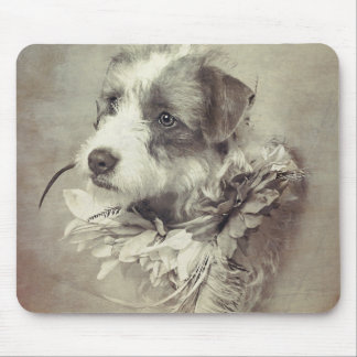 Terrier pup on mouse pad