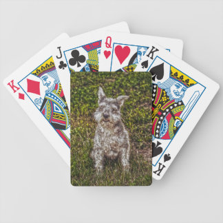 Terrier Schnauzer Pet Dog-lover s Dog Breed Poker Cards
