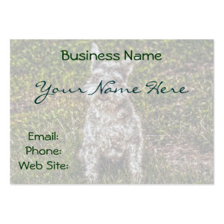 Terrier Schnauzer Pet Dog-lover's Dog Breed Business Card