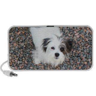 Terrier Speaker