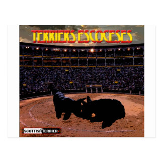 Terriers escoceses postcard