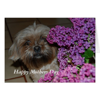 Tessi Happy Mothers Day Greeting Card