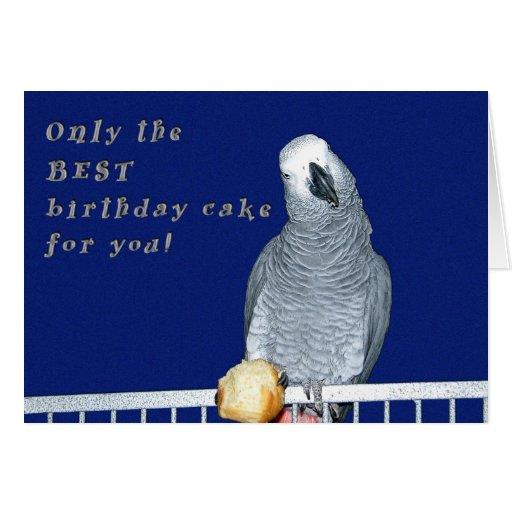 Test Cake Greeting Cards